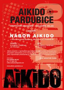 Aikido_A4_2014_01.indd